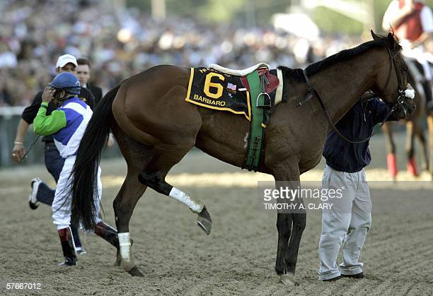 Jockey Edgar Prado walks away from Kentucky Derby winner Barbaro after his horse injured his right hind leg coming into the 1st turn at the 131st...