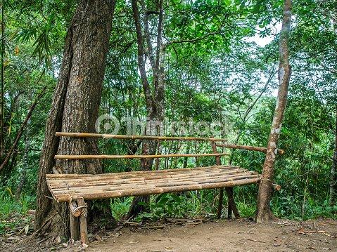banc en bambou lombre des palmiers photo thinkstock. Black Bedroom Furniture Sets. Home Design Ideas