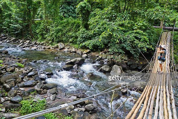 Bamboo Bridge, St Vincent