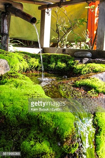 Bamboo dipper water fountain at japanese garden stock for Japanese garden water features bamboo