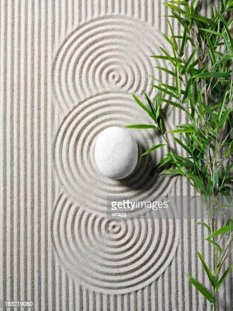 Bambou dans un jardin Zen