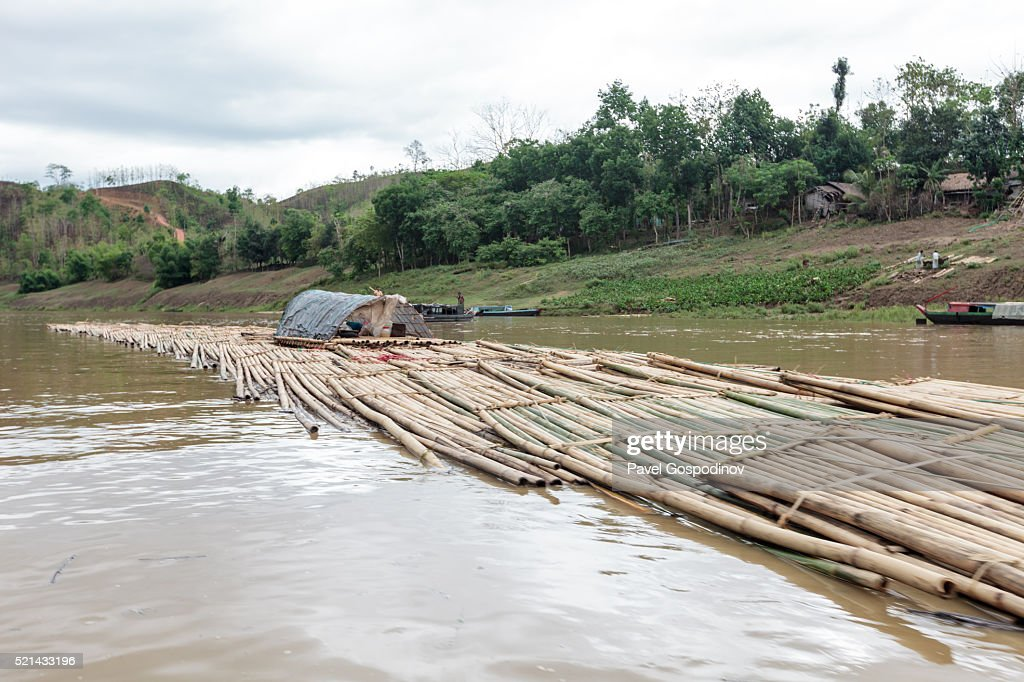 Bamboo logs transported down the Sangu river tied in a sort of rafts