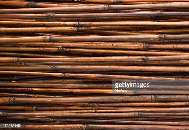 Bamboo Texture, an Asian and Japanese and Chinese Natural Background