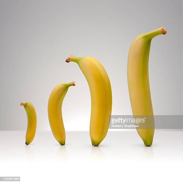 Banana bar graph
