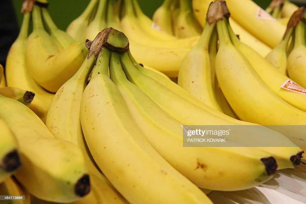 Bananas from the French Antilles are exhibited during the 2015 edition of the Paris International Agricultural Show on February 22 2015 at the...