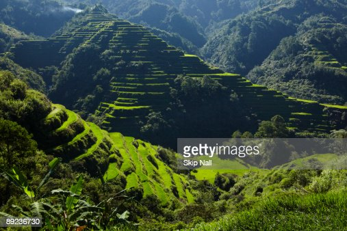 Banaue Rice Terraces : Foto de stock