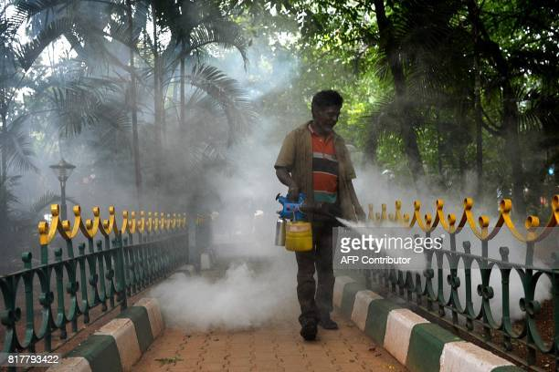A Bangalore municipal worker fumigates a park in a bid to kill off mosquitos in Bangalore on July 18 2017 Over 18700 cases of dengue have been...