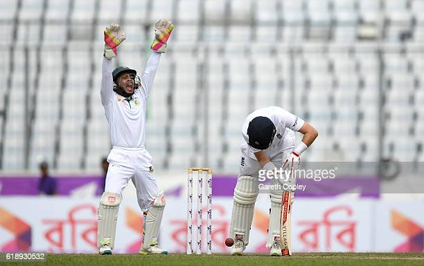 Bangladesh wicketkeeper Mushfiqur Rahim appeals as Joe Root of England is trapped LBW by Taijul Islam during the second day of the 2nd Test match...