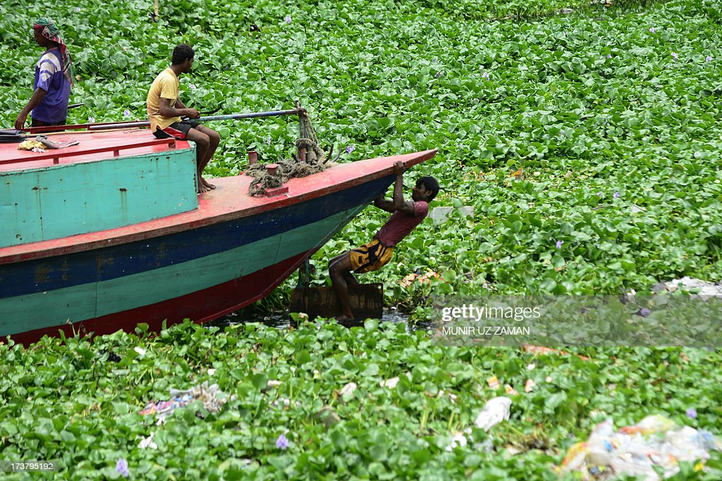 A Bangladeshi boatman tries to free water hyacinth from his vessel's propeller during an ongoing nationwide strike called by the Bangladesh Jumaat-e-Islami in Dhaka on July 18, 2013. The strike has been called to protest the death sentence of the party's secretary general Ali Ahsan Mohammed Mujahid. A Bangladesh court has sentenced a leading Islamist politician to death for war crimes including murder, torture and kidnapping, as religious hardliners imposed a nationwide strike over the verdict. Ali Ahsan Mohammad Mujahid, 65, the second-highest ranked official of the country's largest Islamic party, was found guilty of five of seven charges by the much-criticised International Crimes Tribunal. AFP PHOTO/Munir uz ZAMAN