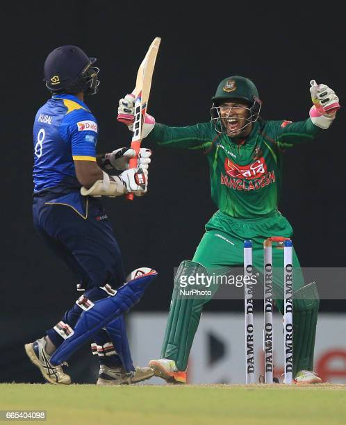 Bangladesh's wicketkeeper Mushfiqur Rahim celebrates as Sri Lanka's Kusal Janith Perera looks on after losing his wicket during 2nd and final T20...