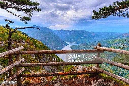Banjska stena viewpoint at Tara National Park, Serbia : Stock Photo