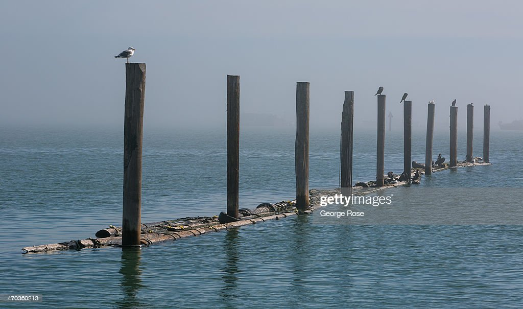 A bank of heavy fog shrouds the marina and waterfront on February 13, 2014, in Sausalito, California. San Francisco continues to be a major global tourist destination and has experienced a real estate and high-tech boom in recent years.
