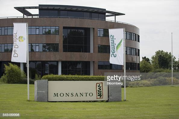 Banners fly outside the offices of De Ruite and Seminis the vegetable seeds division of Monsanto Co in Bergschenhoek Netherlands on Thursday July 7...