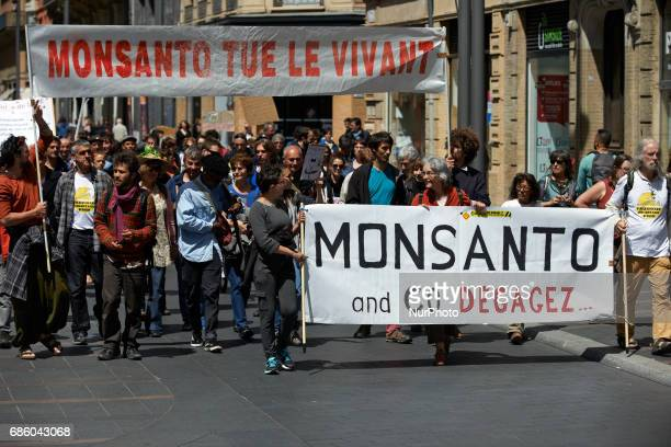 Banners reading 'Monsanto amp Co clear off' and 'Monsanto kills life' during the International March against Monsanto which took place in Toulouse as...