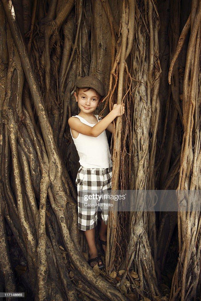 Banyan Boy : Stock Photo