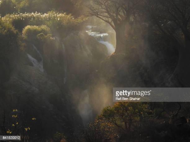 Baobab trees in Epupa falls
