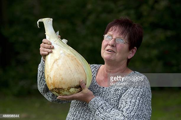 Barbara Cook competitor in the Heaviest Onion Competition poses for a photograph with her 6165 kg winning onion at the Harrogate Autumn Flower Show...