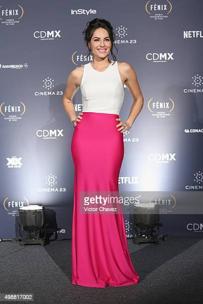 Barbara Mori attends the Premio Iberoamericano de Cine Fenix 2015 at Teatro de La Ciudad on November 25 2015 in Mexico City Mexico