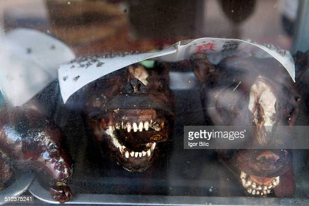 Barbecued dog meat, Phnom Penh, Cambodia