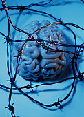 Barbed Wire Over Brain