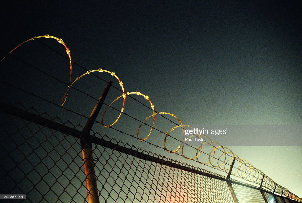 Barbed wire security fence, low angle view : Stock Photo