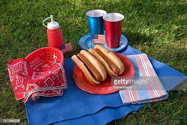 Barbeque Hot Dog Picnic, Labor & Memorial Day & Fourth of July