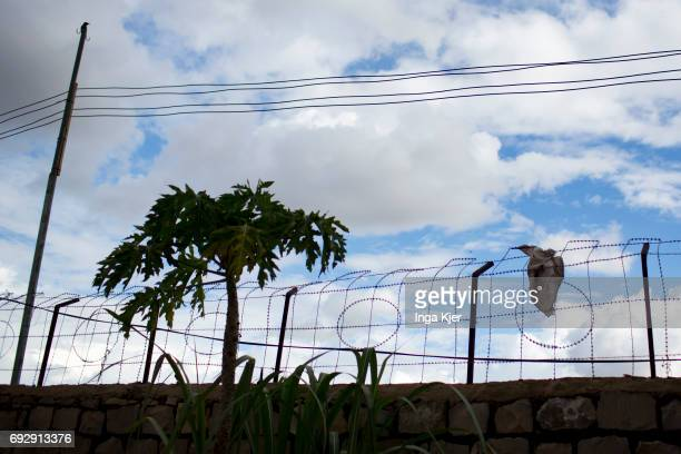 Barbwire at a rehabilitation center for former fighters of the AlShabaab militia on May 01 2017 in Baidoa Somalia