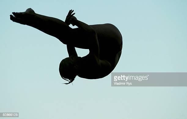 WM 2003 Barcelona Wasserspringen/Kunstspringen/3m Brett/Finale/Frauen Ditte KOTZIAN/GER