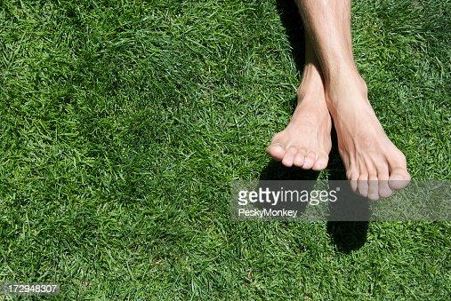 素足夏のリラックスした緑の芝生