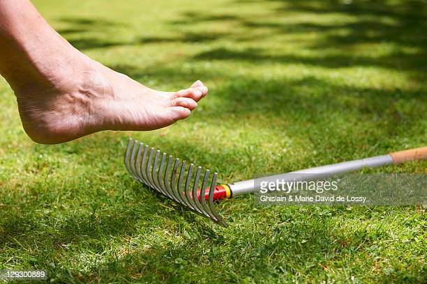Bare foot about to step on rake
