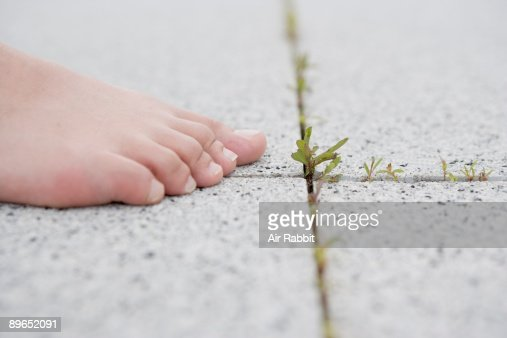 Bare foot of woman on paving stone.  : Stock Photo