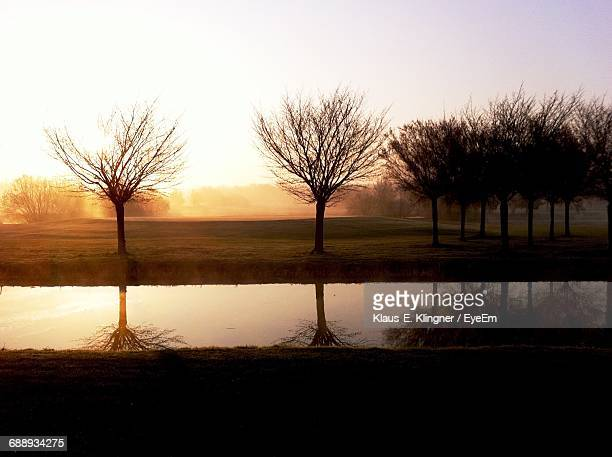 Bare Trees On Field By Pond Against Clear Sky During Sunset
