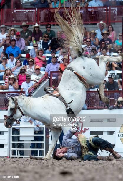 Bareback rider Weston Garrett is thrown during the Frontier Days Rodeo on July 23 2017 in Cheyenne Wyoming