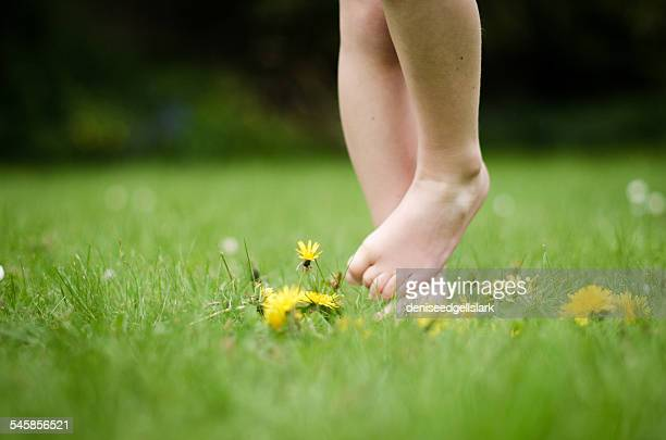 Barefoot boy standing in grass
