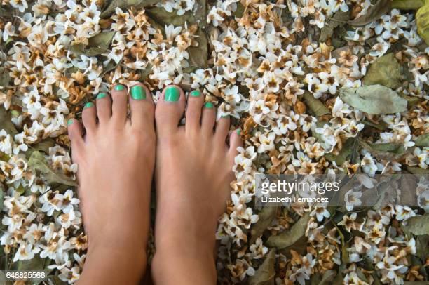 Barefoot flowers