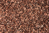 Bark background mulch pine tree