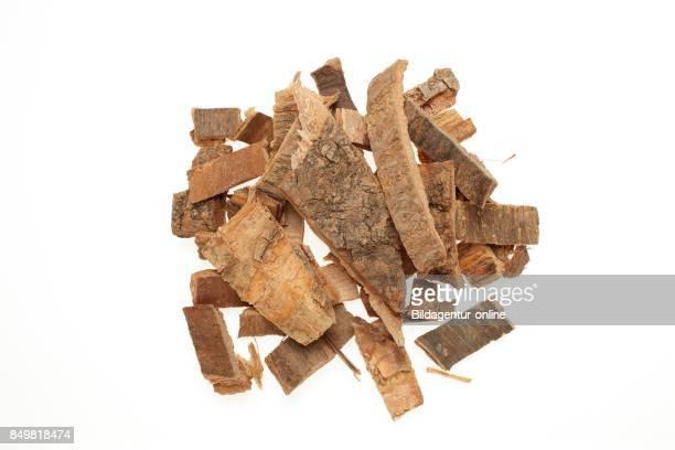 Bark Of The Medicinal Plant Coral Bean Bark Erythrina Bark Erythrina Variegata Orientalis Hai Tong Pi