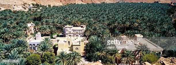 An ancient village surrounded by an irrigated plantation of date palms in a desert valley.