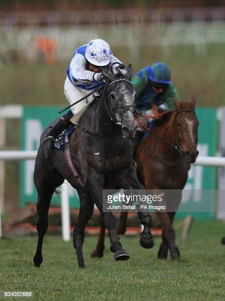 Barker ridden by David Casey goes on to win The Pierse Hurdle at Leopardstown Racecourse