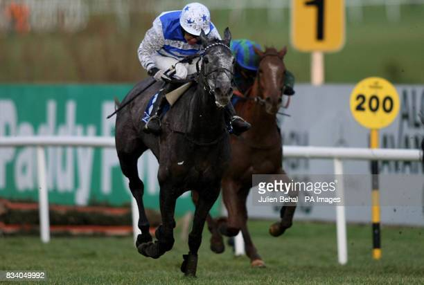 Barker ridden by Timmy Murphy goes on to win The Pierse Hurdle at Leopardstown Racecourse