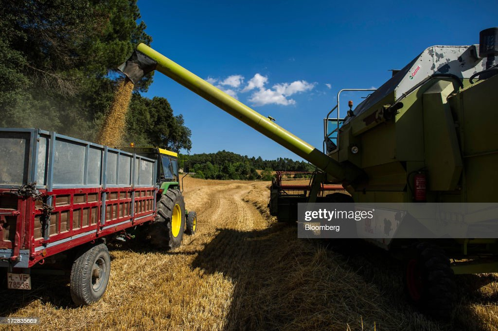 Barley grain pours from a Claas Dominator 98 combine harvester into a wagon during harvesting in Cervera, Spain, on Thursday, July 4, 2013. Spain consumes about 28 million to 30 million tons of grain a year, of which two-thirds is produced domestically, according to young farmers organization Asaja. Photographer: David Ramos/Bloomberg via Getty Images