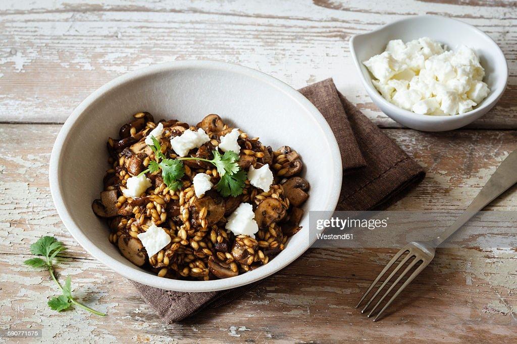Barley risotto with champignon, feta cheese and coriander