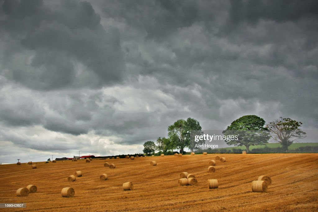 CONTENT] Barley straw bales strewn across a field after harvest near Loughgall, County Armagh, Northern Ireland. Taken 5/8/11.
