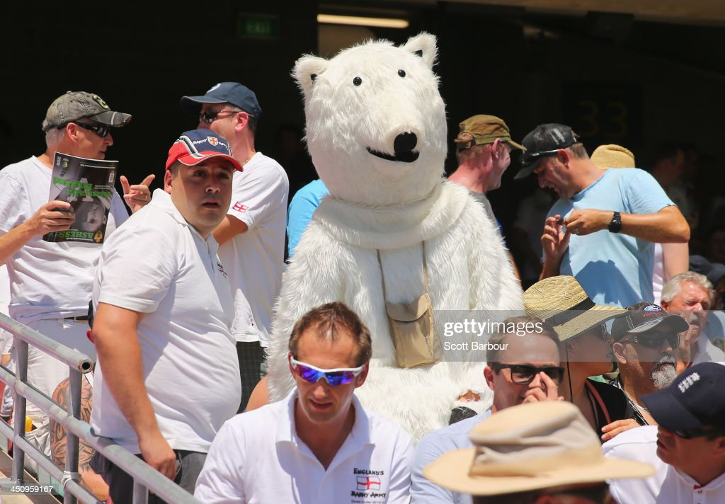 A Barmy Army member in costume looks on during day one of the First Ashes Test match between Australia and England at The Gabba on November 21, 2013 in Brisbane, Australia. The Barmy Army is a group of English cricket fans which arranges touring parties for some of its members to support the English cricket team on overseas tours, as well as followers of the team who join in with match day activities in the crowd, but do not travel as part of an organised tour.