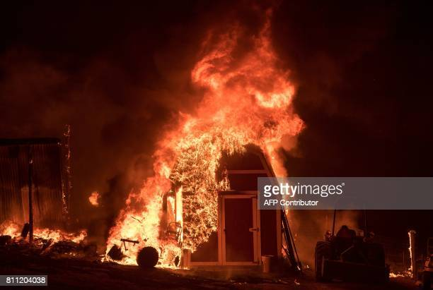 A barn explodes in flames as the 'Wall fire' burns through a residential area in Oroville California on July 9 2017 The first major wildfires after...