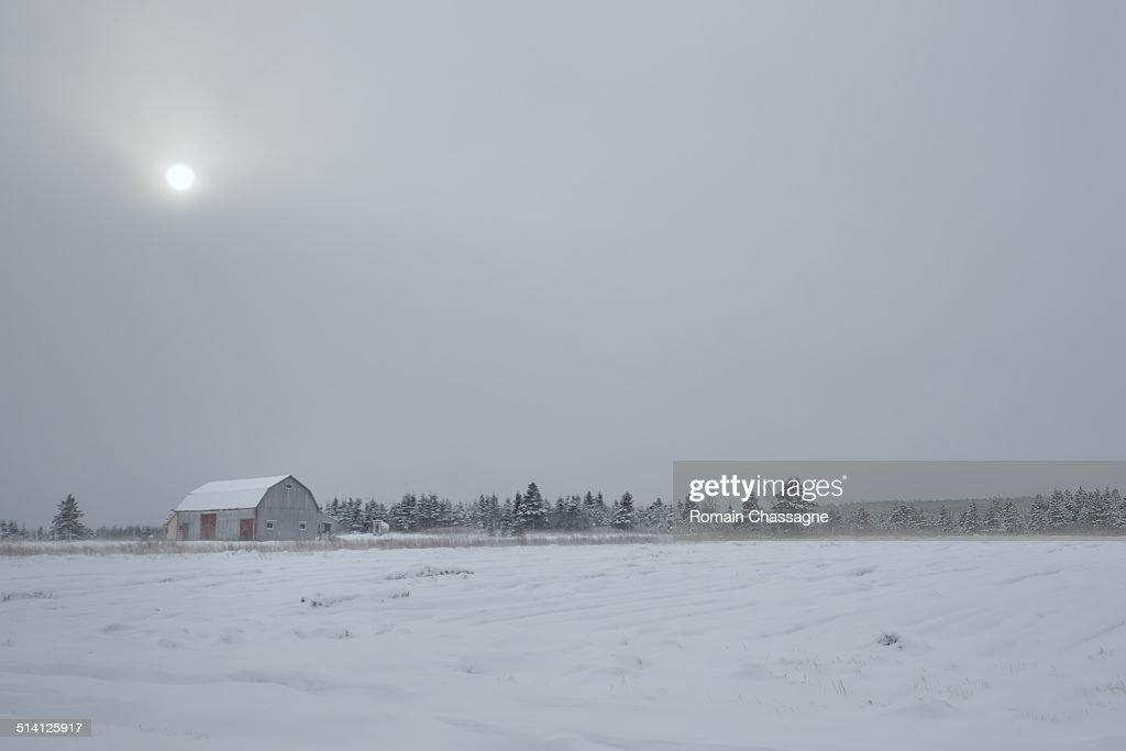 A barn in a snowfield