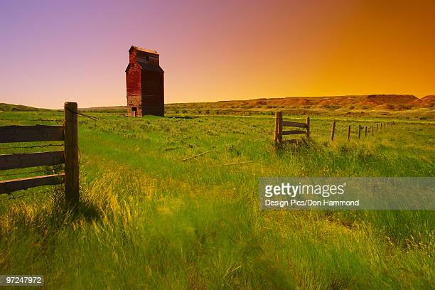 Barn in field, Alberta, Canada