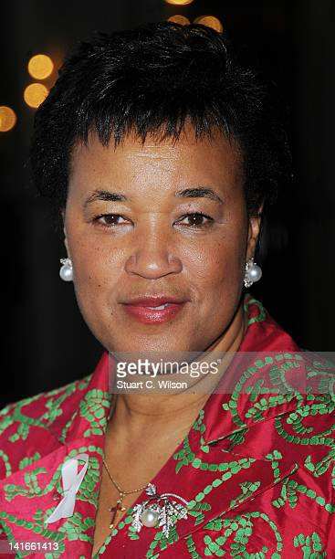 Baroness Scotland of Asthal attends the launch of Reducing Domestic Violence for Peace One Day at Grosvenor House on March 21 2012 in London England