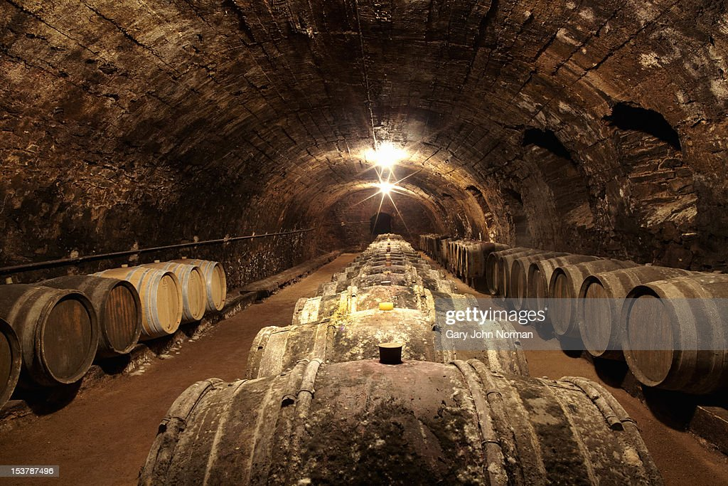 barrels in a wine cellar in France : Stock Photo