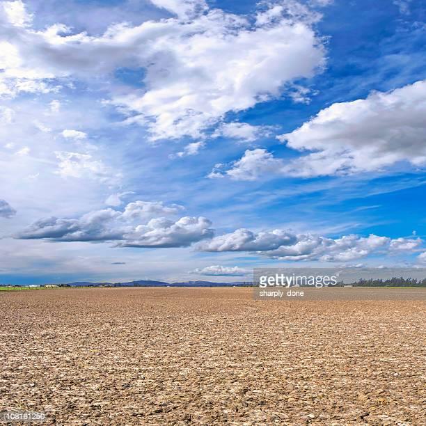 barren farm field